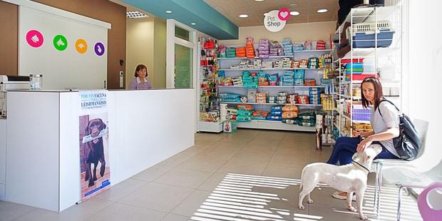 Los mejores consejos para tener una buena tienda de mascotas